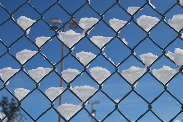 Residential Chain Link Fence design